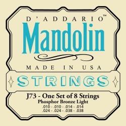 D'Addario J73 [Corzi mandolină]