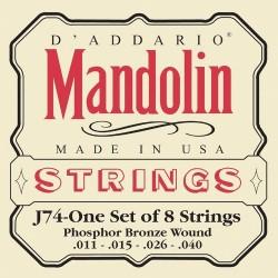 D'Addario J74 [Corzi mandolină]