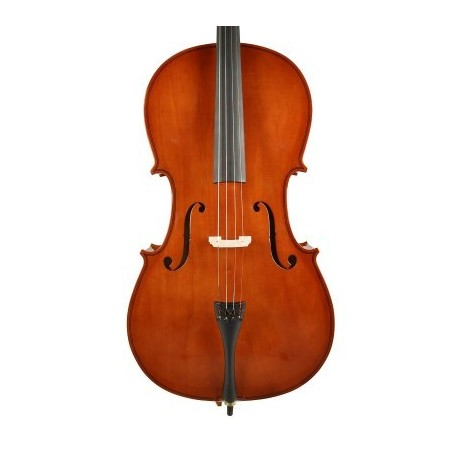 Set  Violoncel 4/4  Leonardo Basic Series LC1034