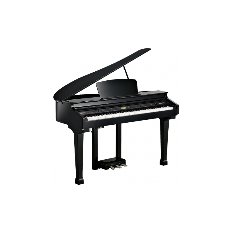 Kurzweil KAG100 BP - Pian Digital